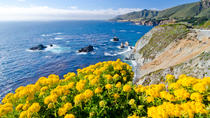 Top Day Trips from San Francisco